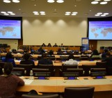 The Role of Diaspora in Humanitarian Response