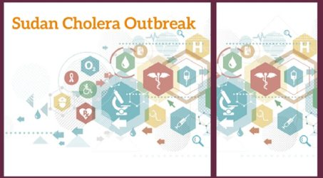 Diaspora Mobilising to Support Local Groups in Sudan Get a Grip on the Cholera Outbreak